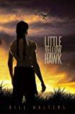 Little Yellow Hawk