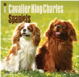 Cavalier King Charles Spaniels 2015 Square 12x12 (Multilingual Edition)